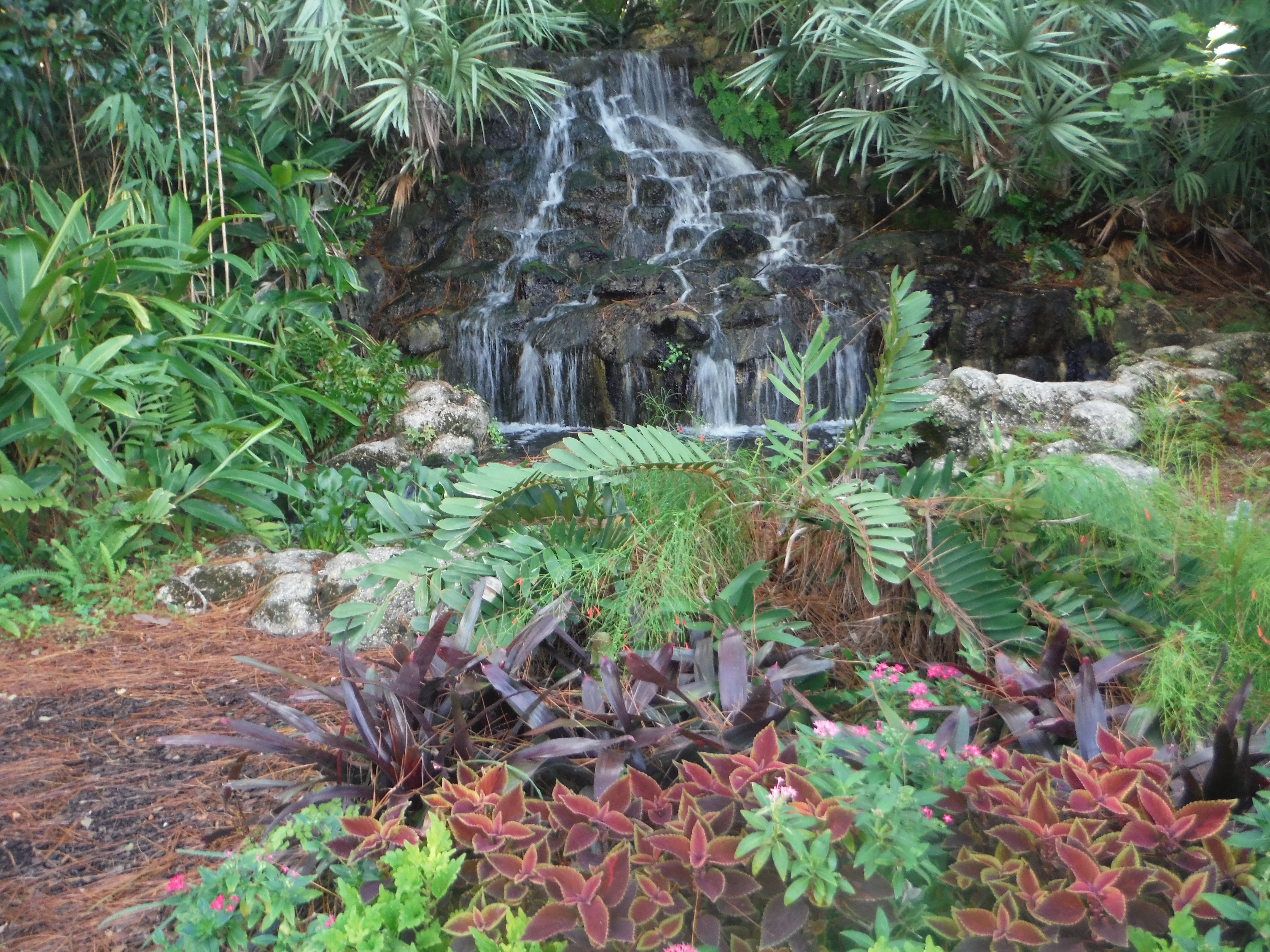 Awesome Beach Gardens Images - Landscaping Ideas for Backyard ...